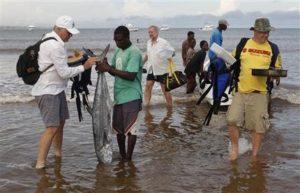рыбный рынок Малинди