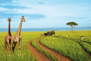 туризм Кения