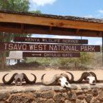 Сафари 3 дня и 2 ночи, парк Амбосели и Тсаво Вест