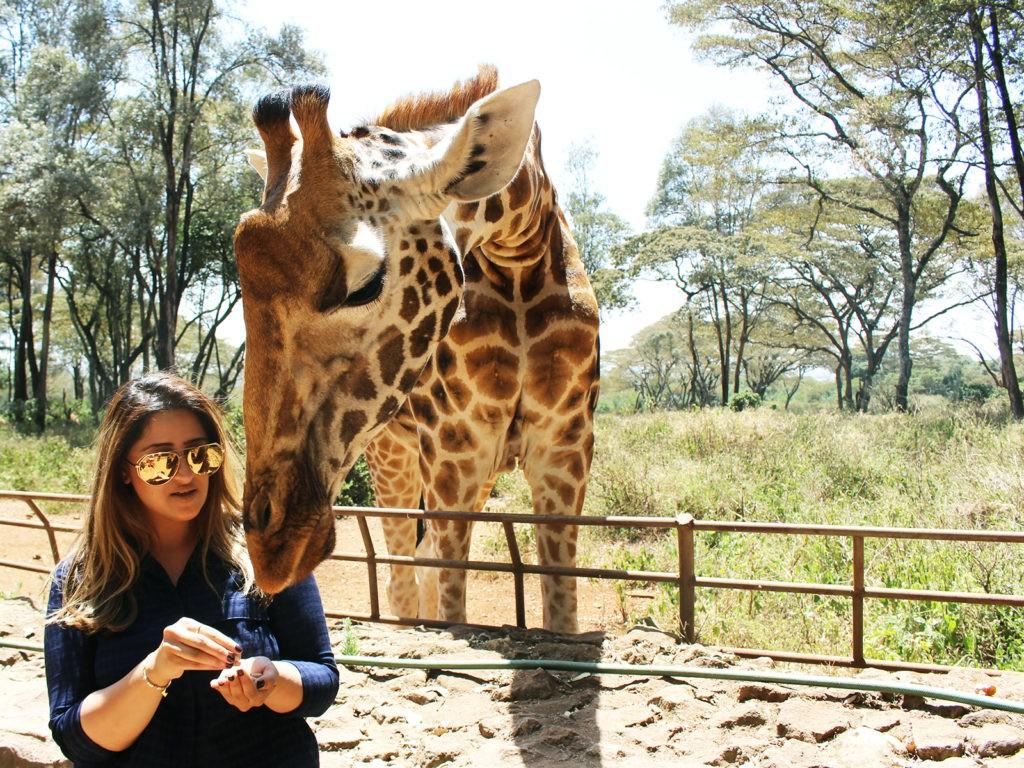 Экскурсии в Найроби