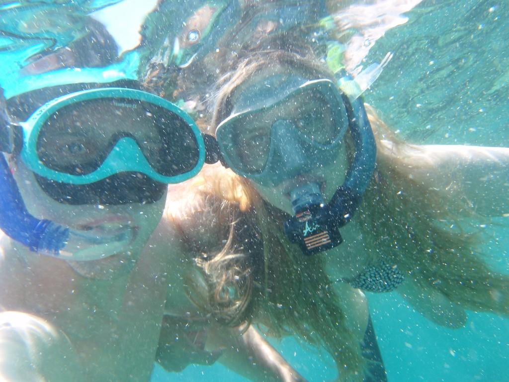 Подводное плавание с дельфинами