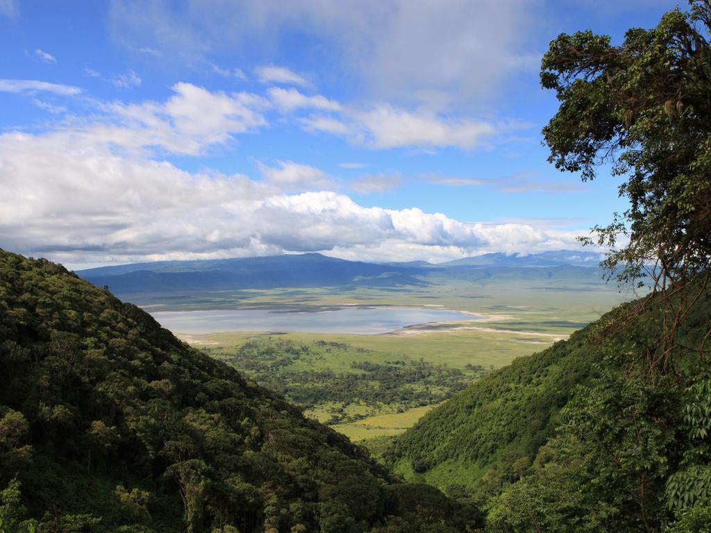 кратер нгоронгоро, сафари в танзанию