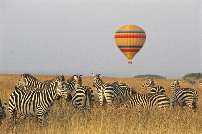 Сафари в Кении с полётом на воздушном шаре