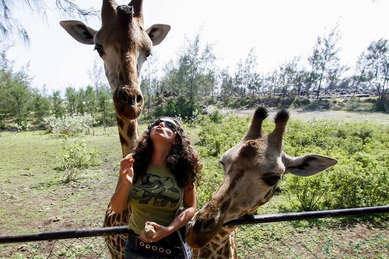 Почему нужно поехать в Кению