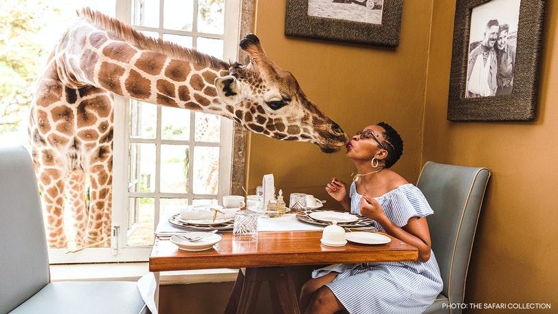 Жираф Манор в Кении